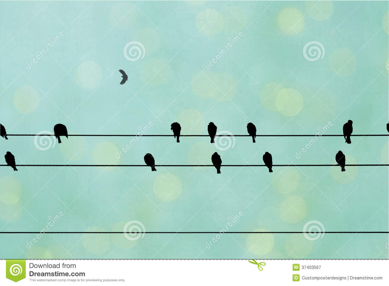 Birds on a wire. stock image. Image of layers, black - 37403567