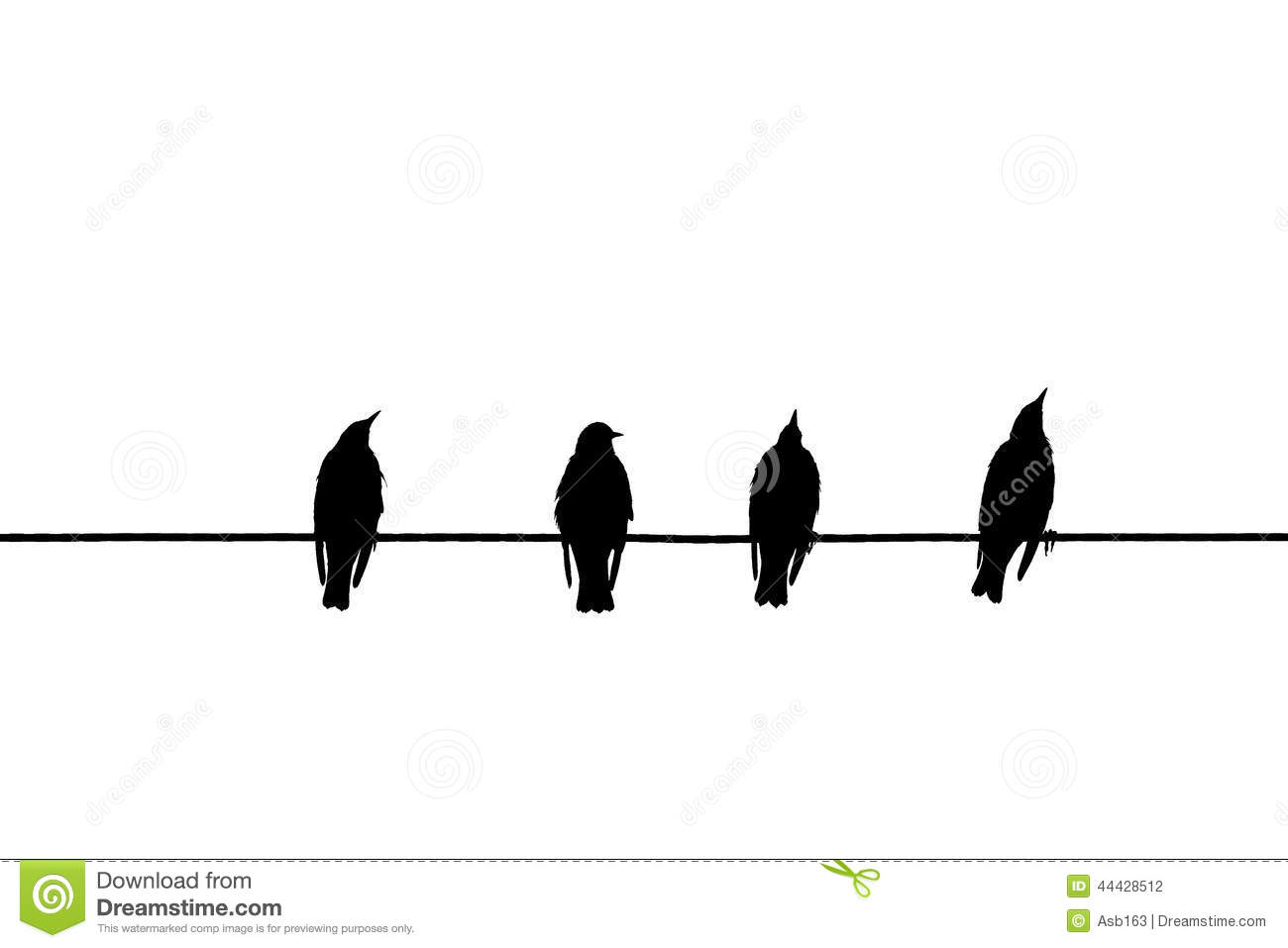 Birds On A Wire Stock Photo Image Of Nature Wing Scene 44428512