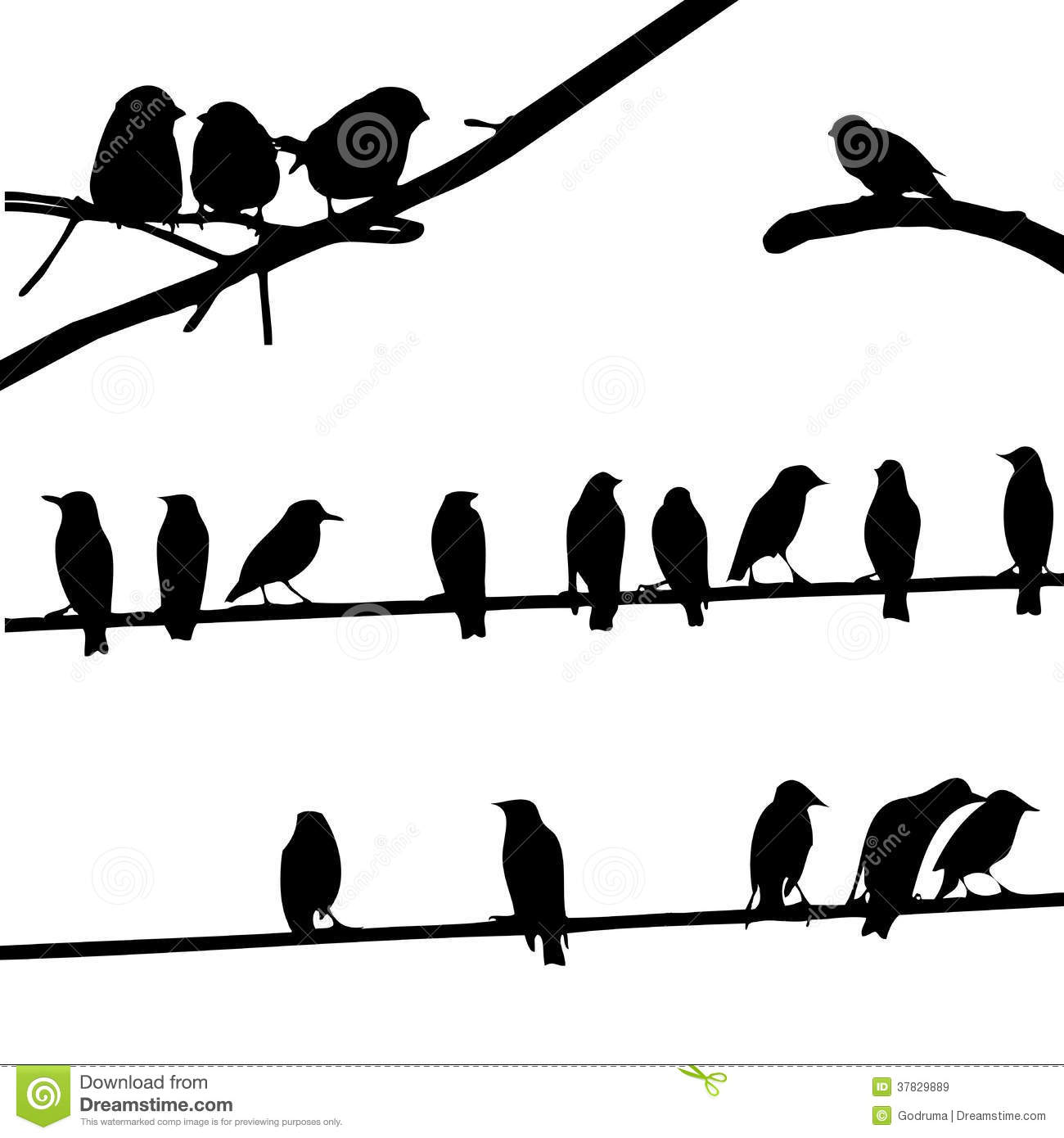 Birds On Wires, Silhouette Set Royalty Free Stock Images - Image ...