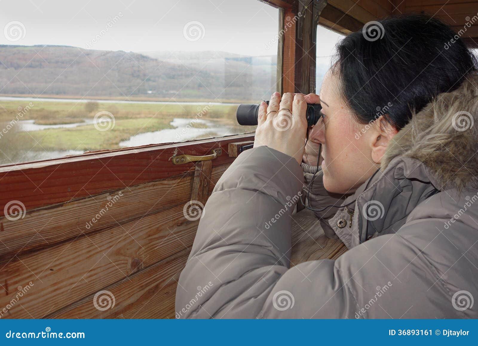 Download Birdwatching immagine stock. Immagine di uccello, tenuta - 36893161