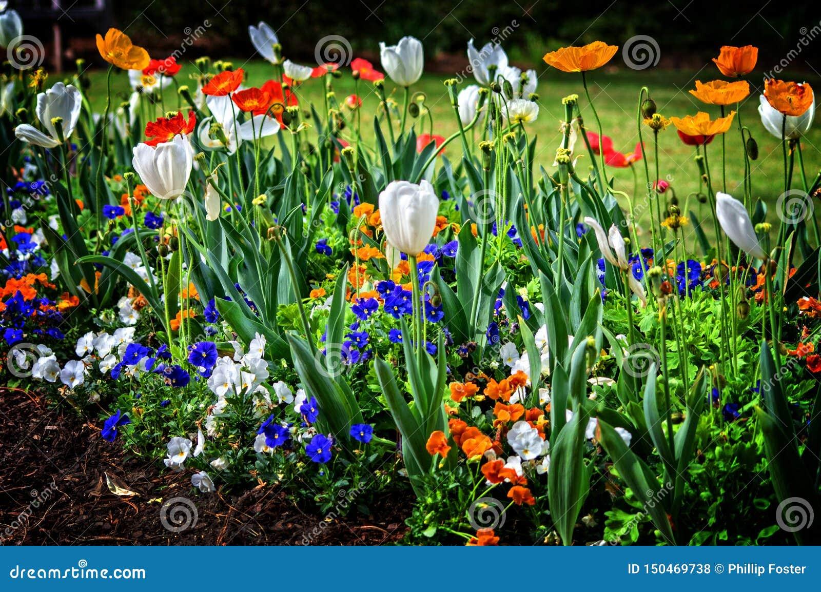 Birmingham AL Flowers schräg