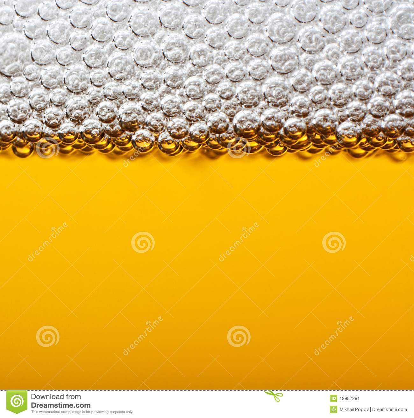Birra del primo piano con gomma piuma.