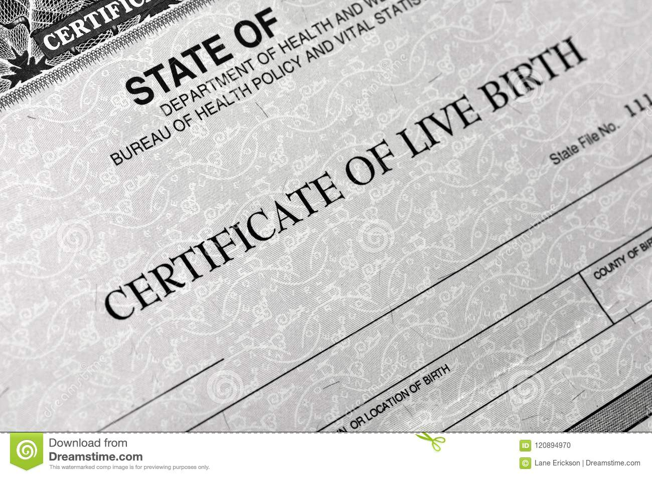 Birth Certificate For Live Baby Born Stock Photo Image Of Legal
