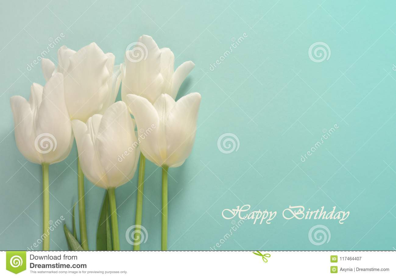 Birthday Card White Tulips On A Light Turquoise Background