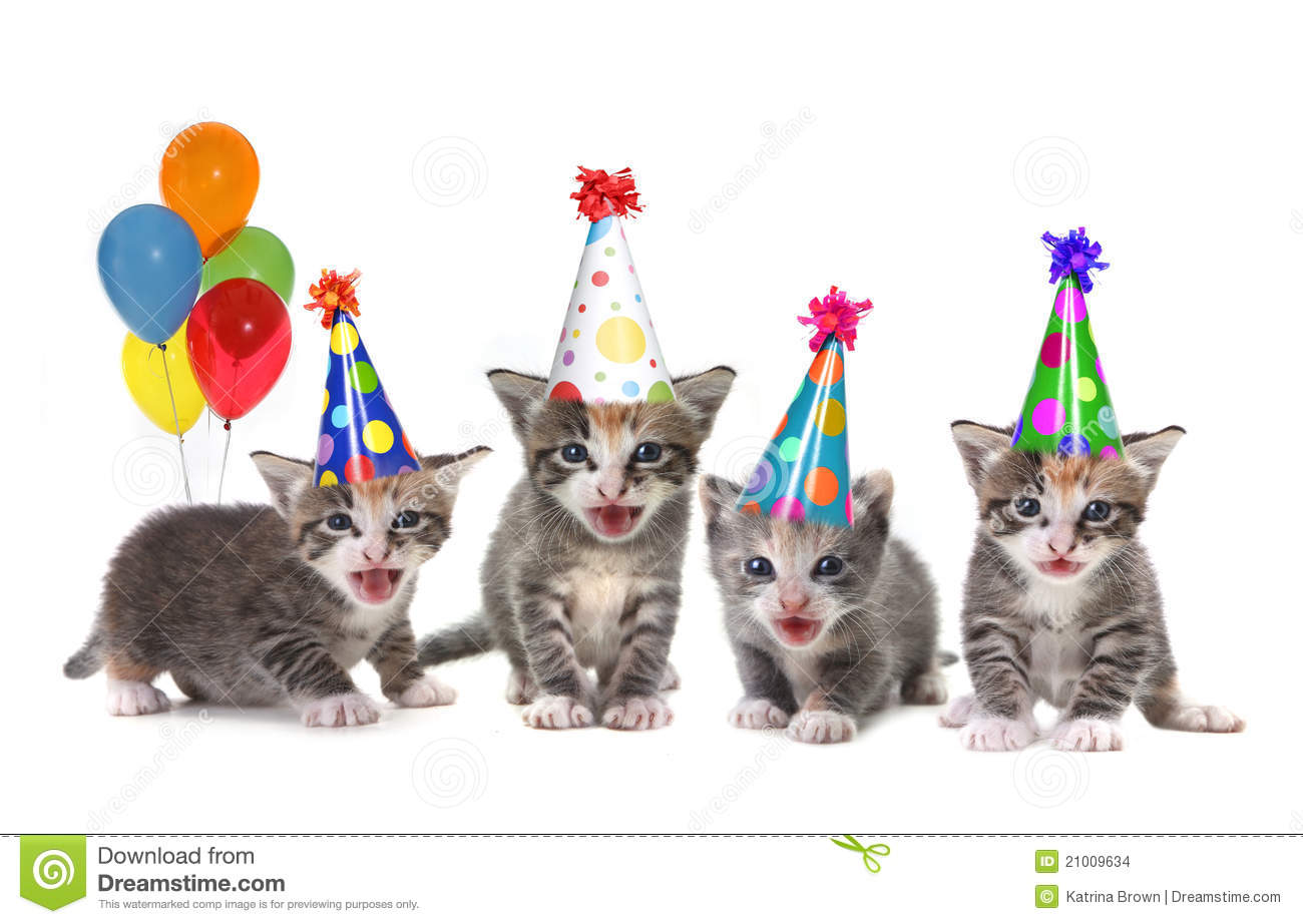 Kitty Cat Birthday Invitations with perfect invitations ideas