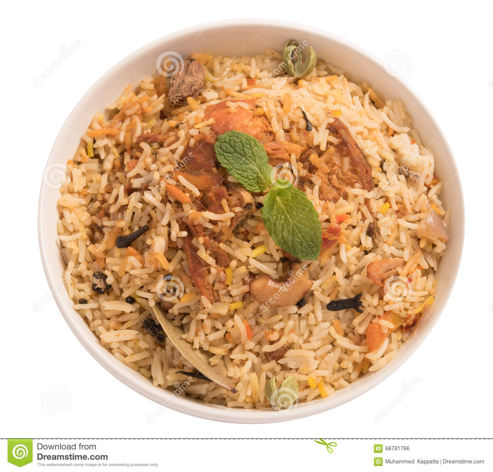 Biryani delicioso del pollo
