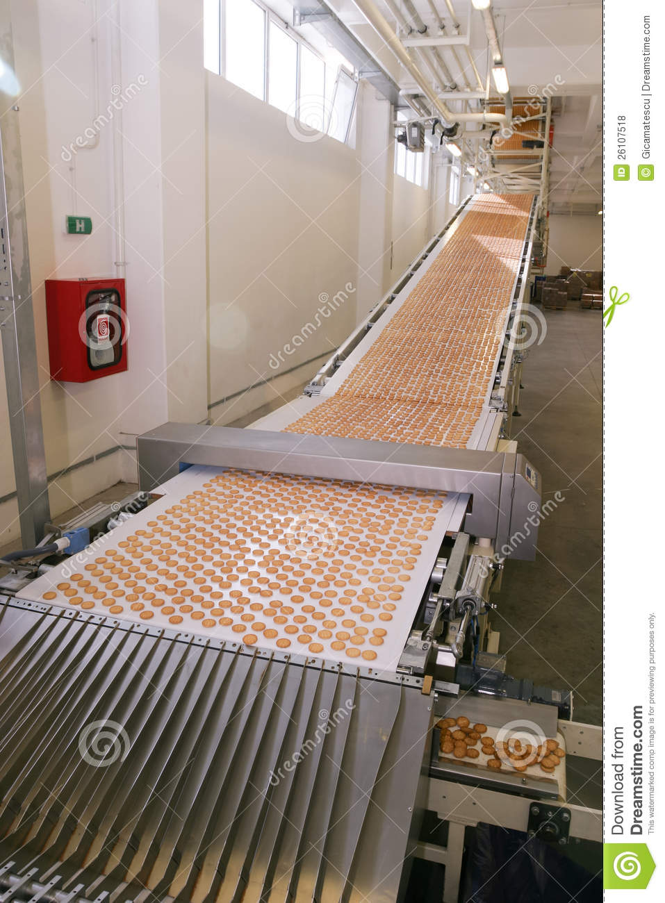 Biscuit Factory Stock Photo Image Of Action Delicious
