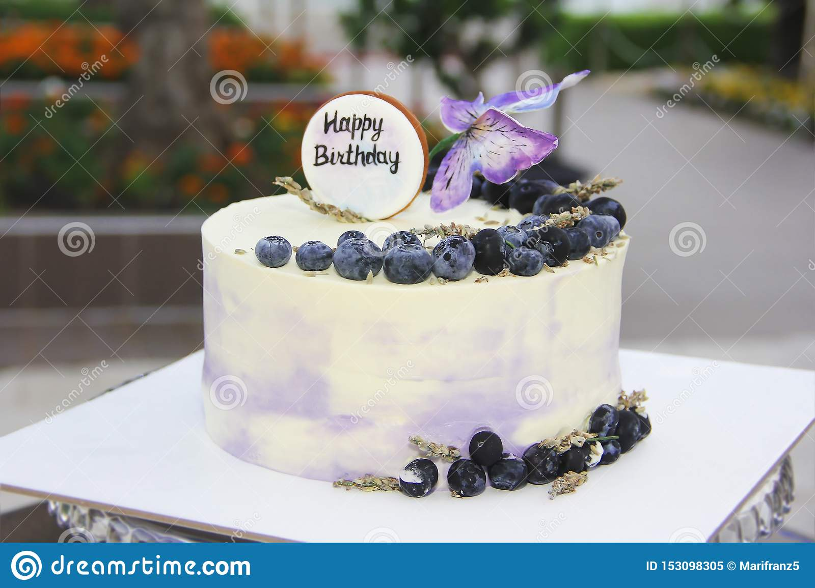 Astonishing Biscuit Festive Cake Cheesecake With Blueberries And Butterflies Funny Birthday Cards Online Fluifree Goldxyz