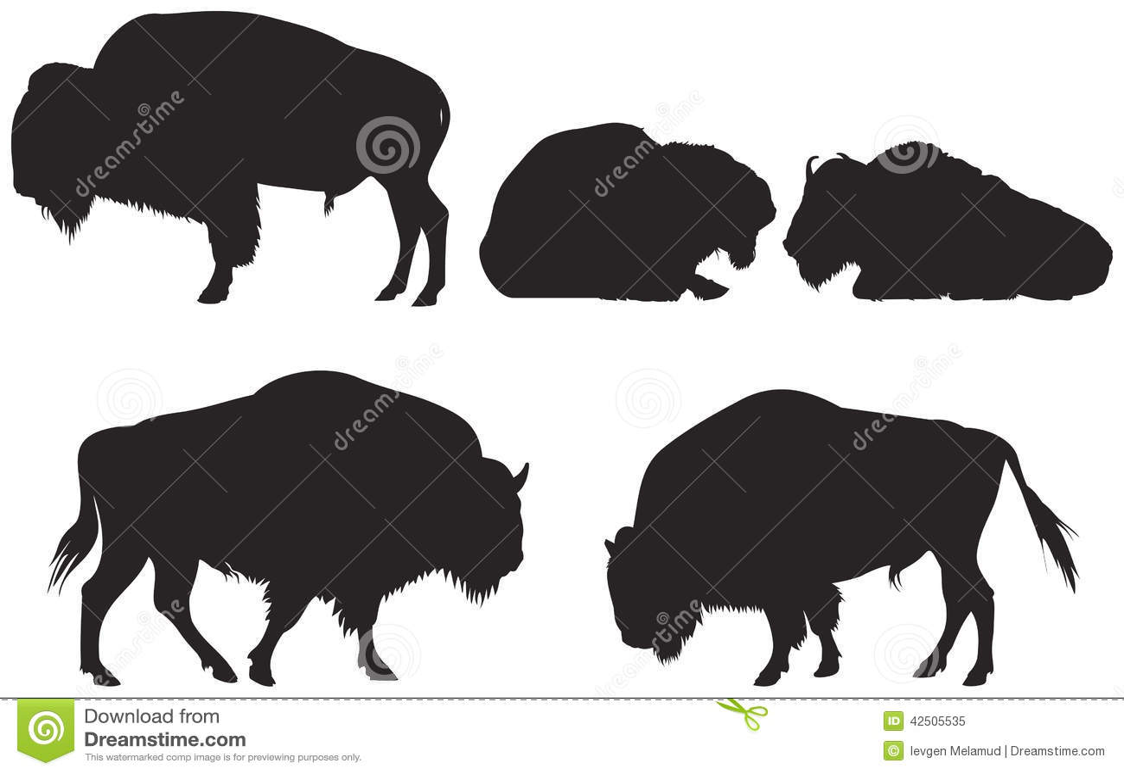 Bisonte ou búfalo