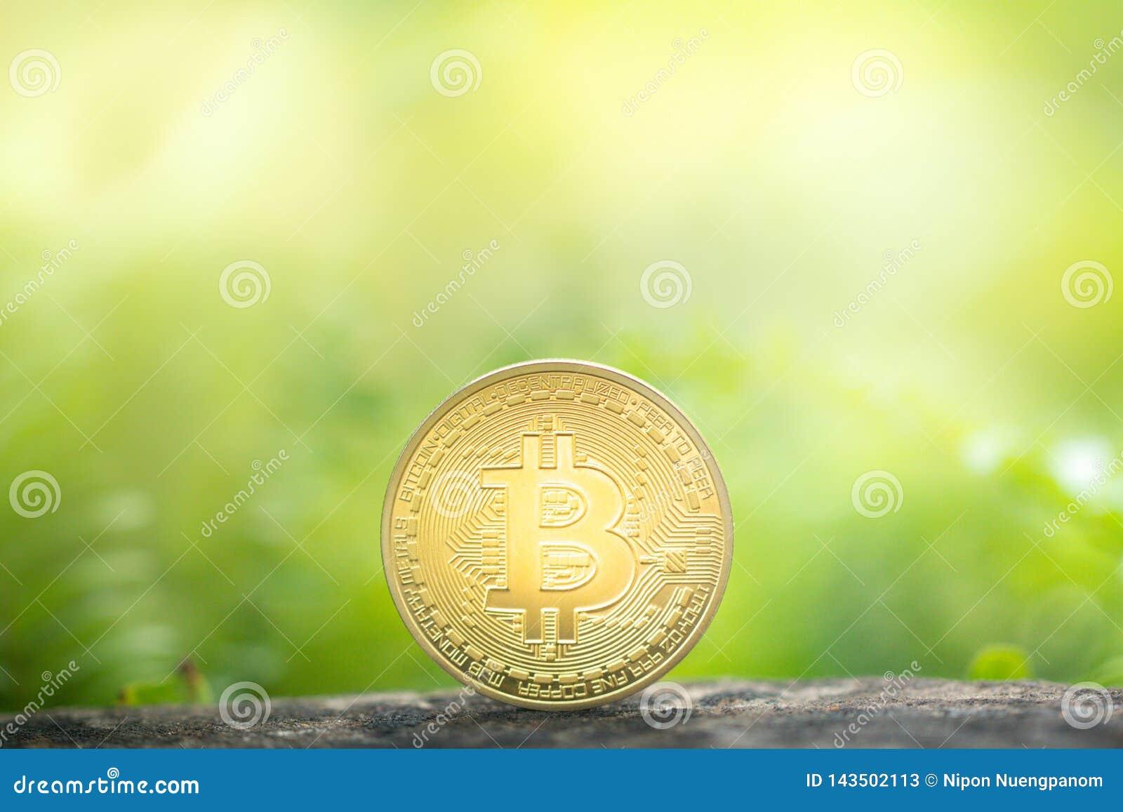 Bitcoin d or sur le fond de verdure