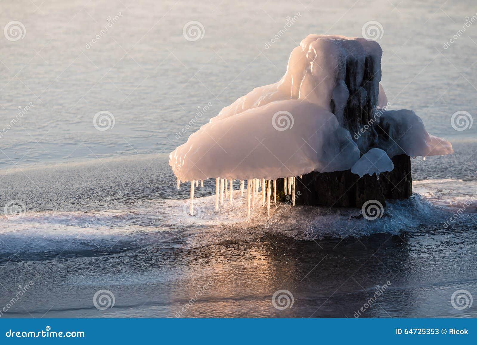 Bitta congelata su un fiume nell inverno
