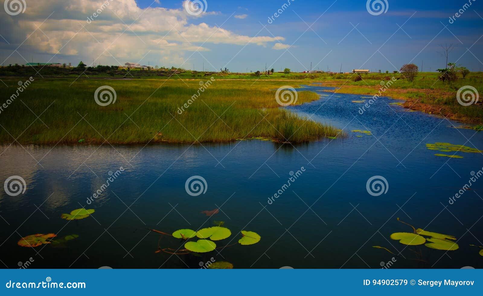 Bitumen och asfalt kastar sjön i den Trinidad ön, Trinidad och Tobago