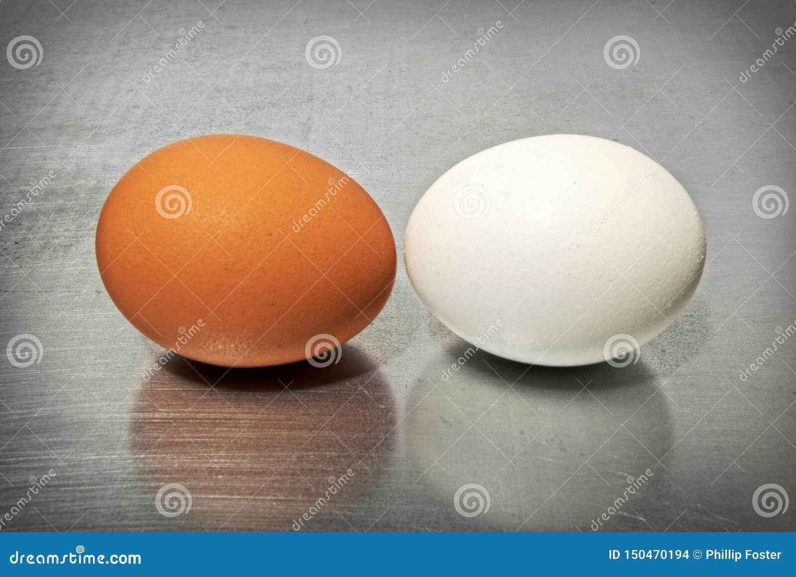 Bitwa jajka