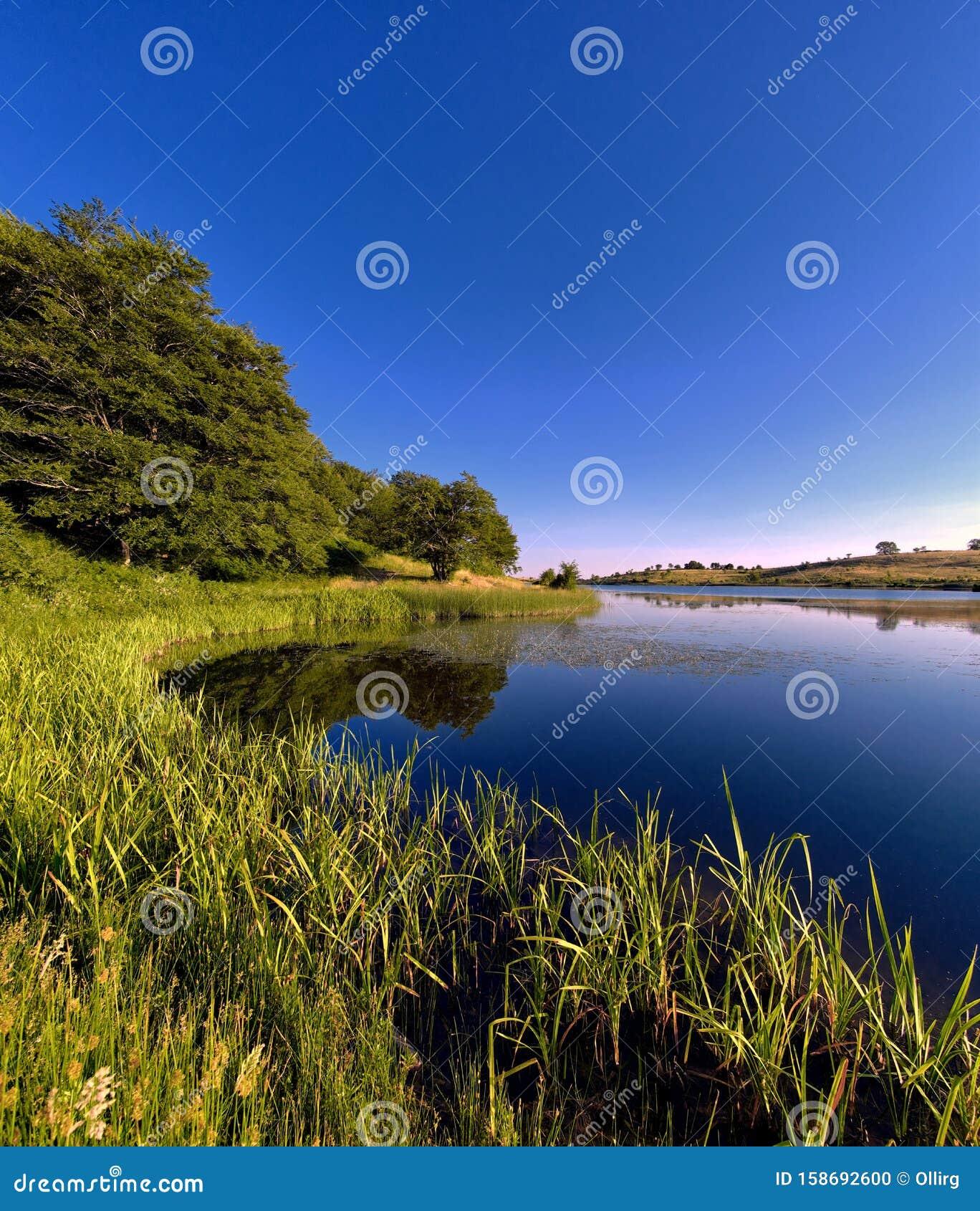 Biviere Lake Idyll Summer Scene In Nebrodi Park, Sicily