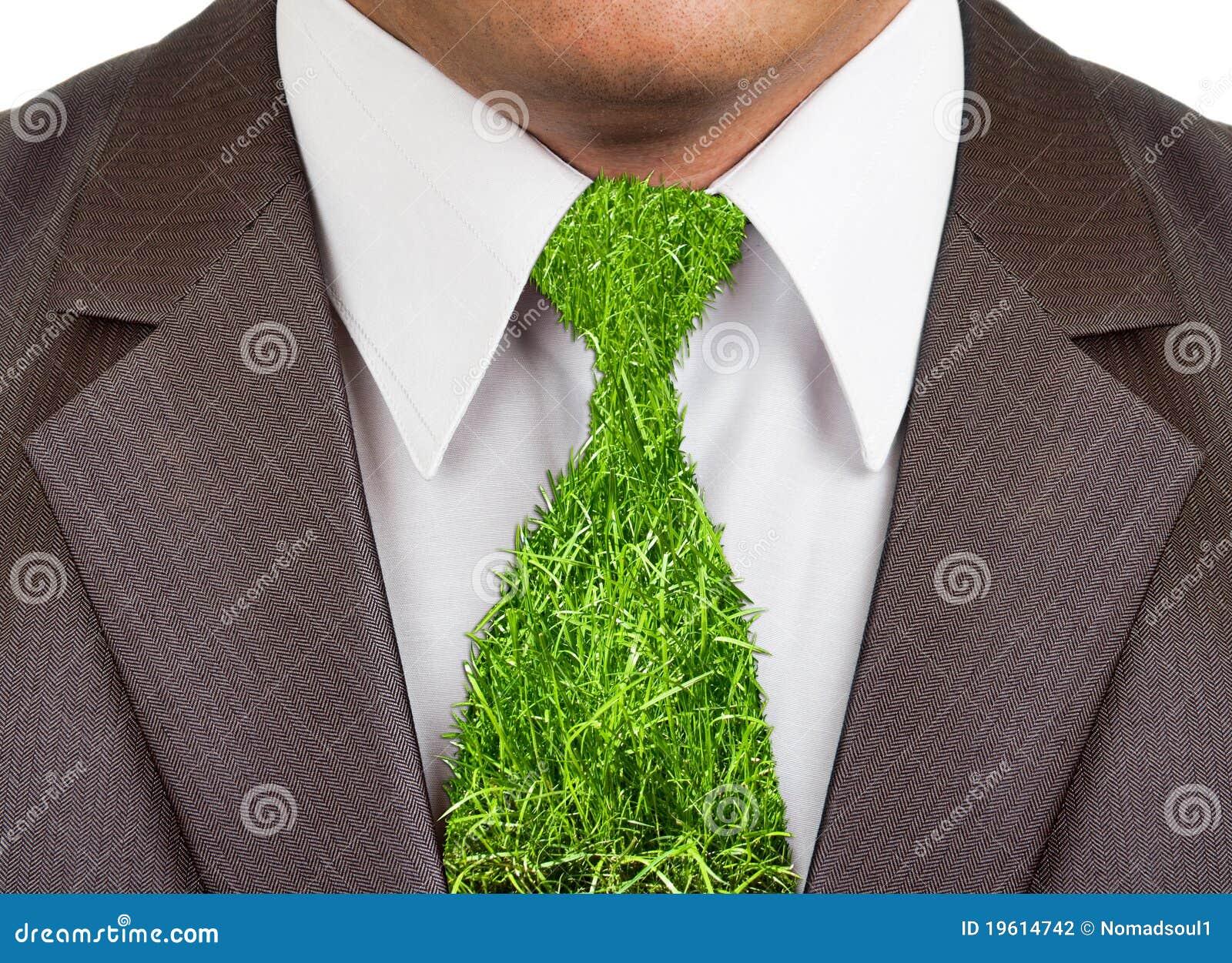 Biznesmena formalny trawy kostiumu krawat