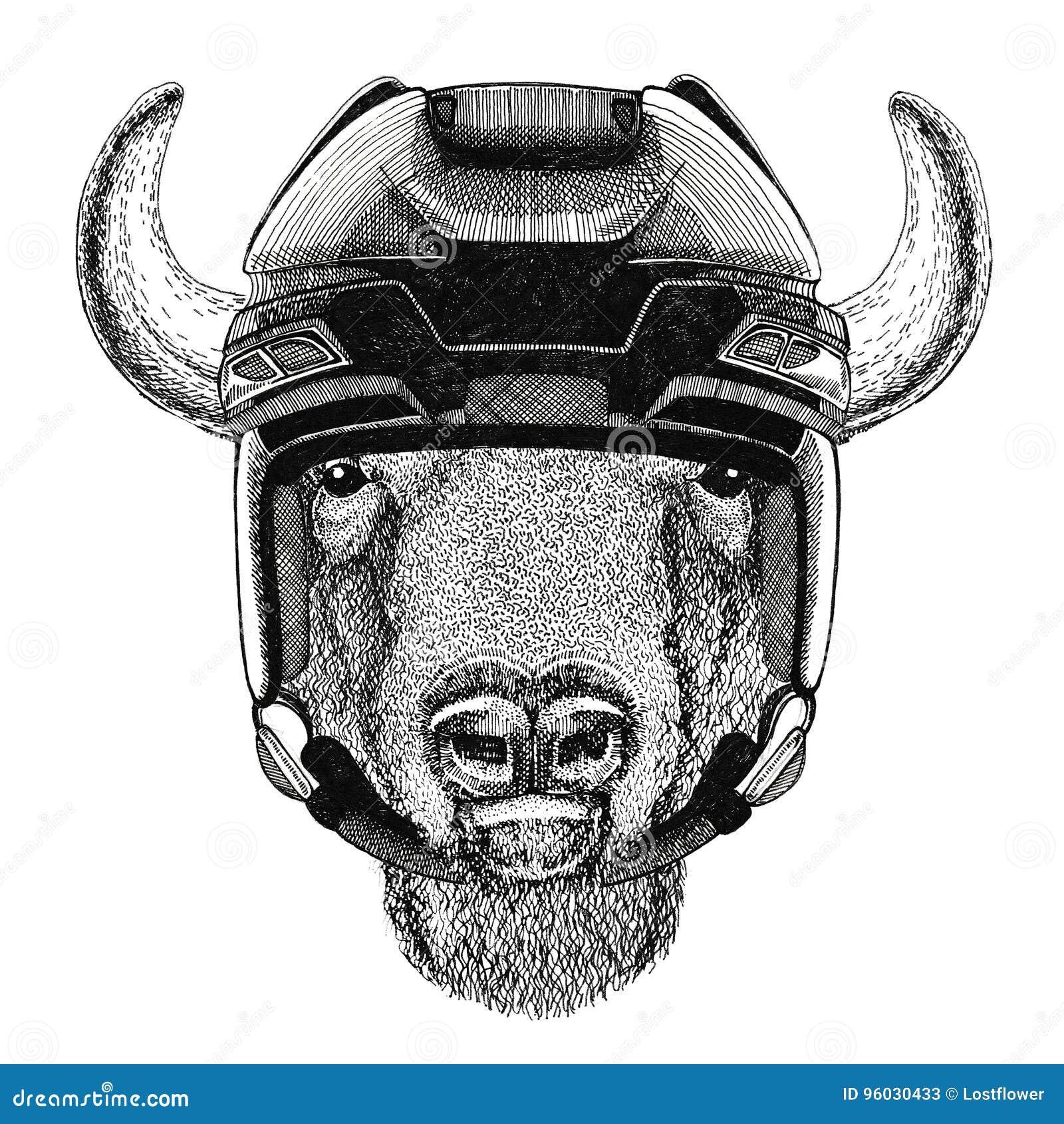 Bizon, żubr, wół, byka wizerunku Hokejowy dzikie zwierzę jest ubranym hokejowego hełma sporta zimy sporta zwierzęcego Hokejowego