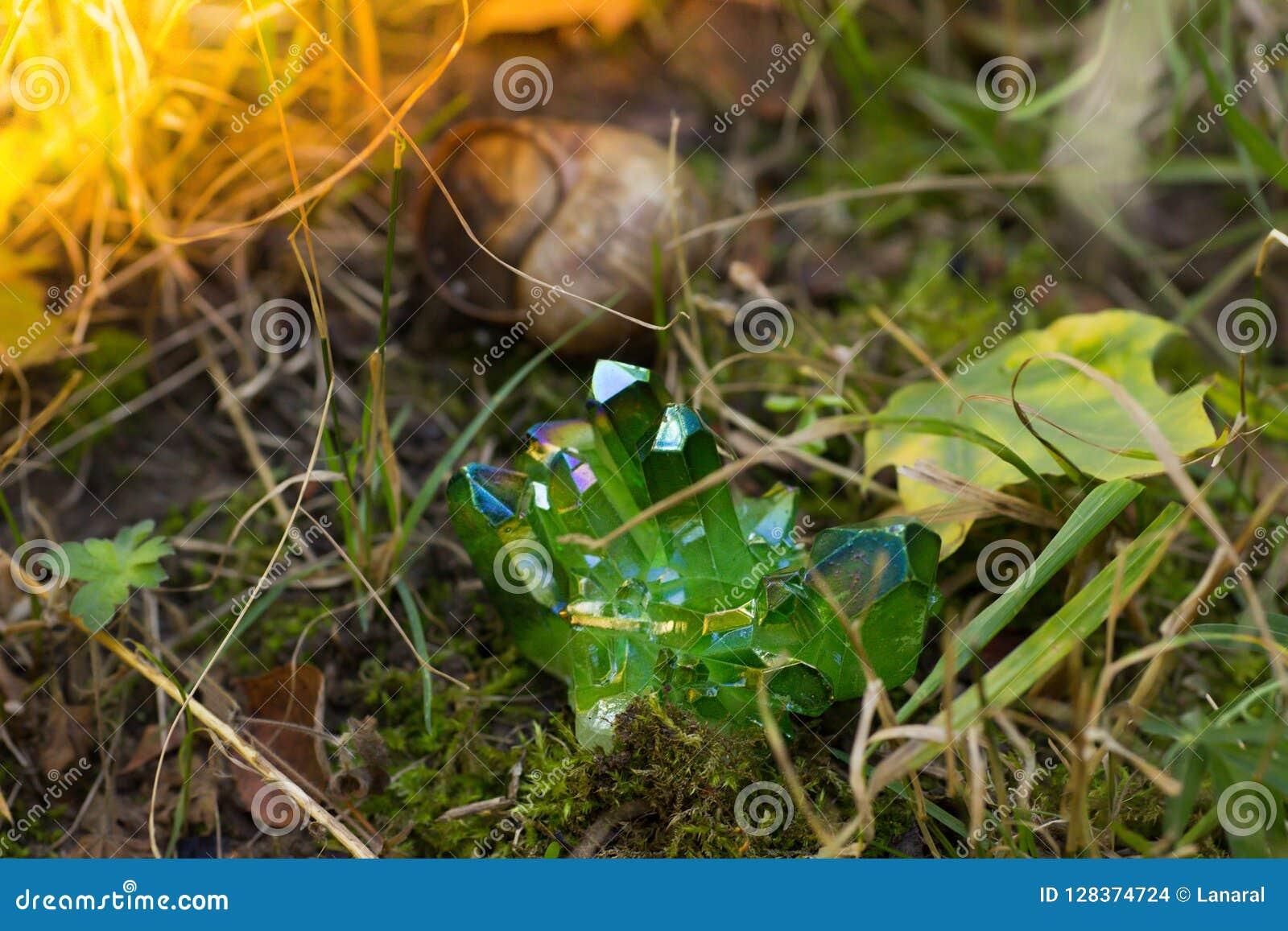 Blänka gröna magiska kristaller i skogen