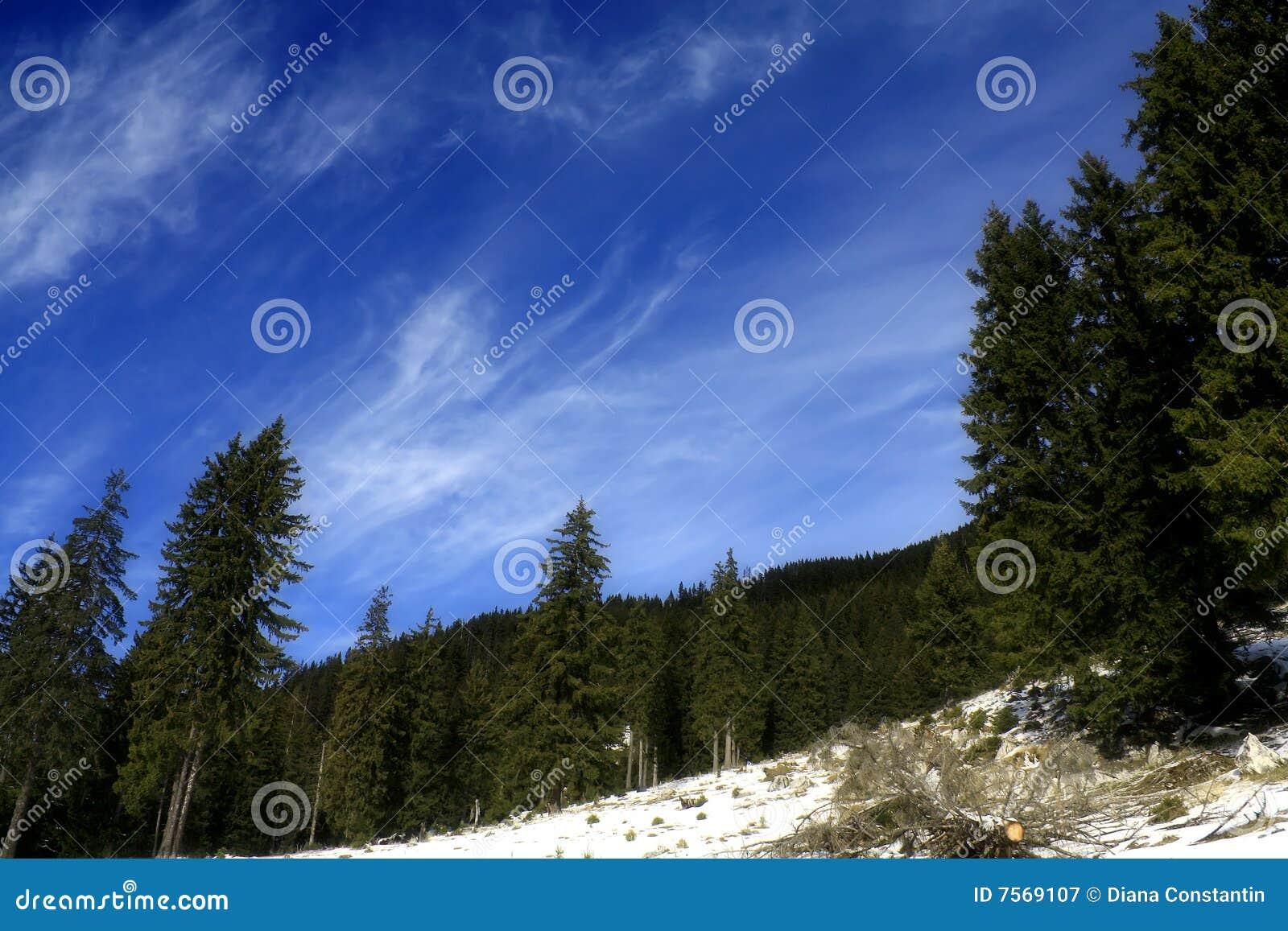 Blå djup sky