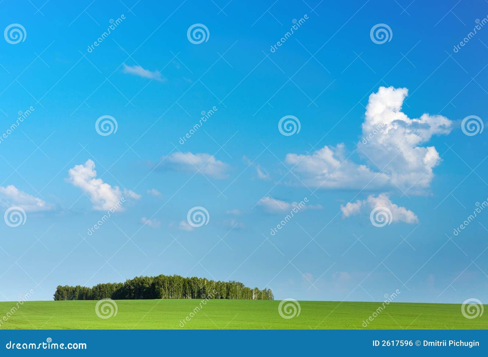 Blå fältgreensky