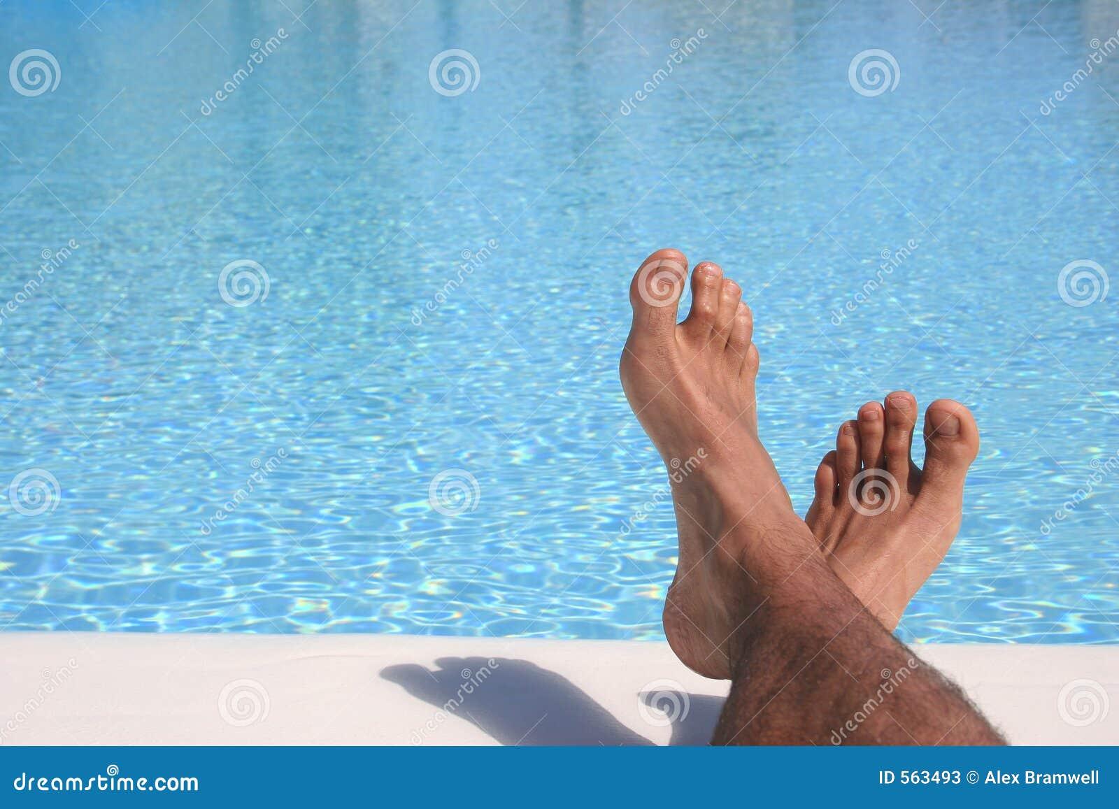 Blå fot pöl
