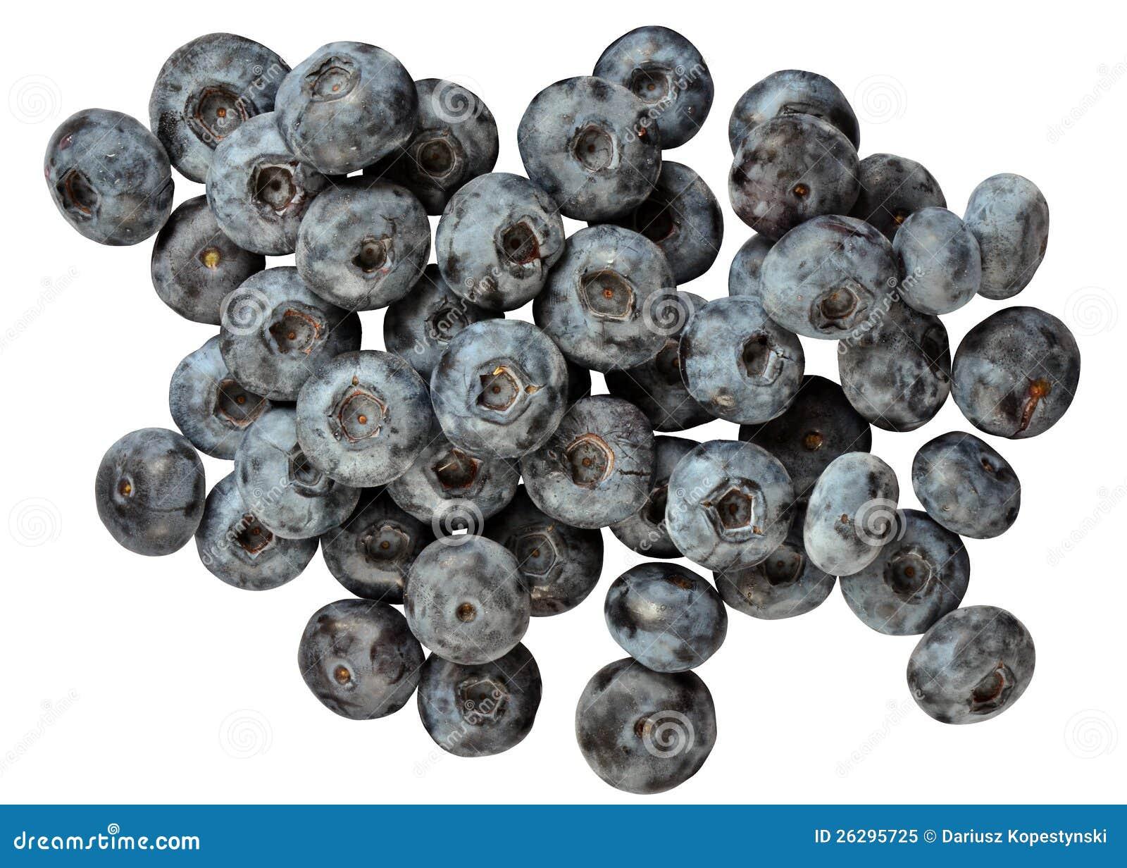 Blå huckleberry