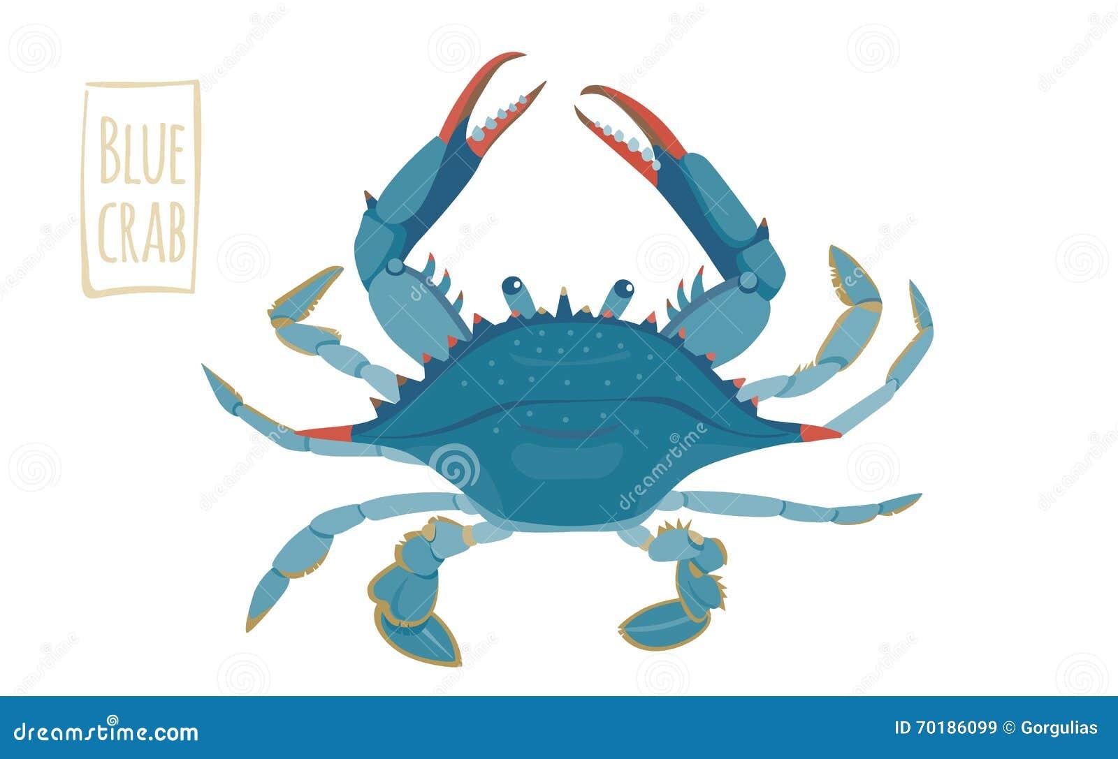 Blå krabba, tecknad filmillustration