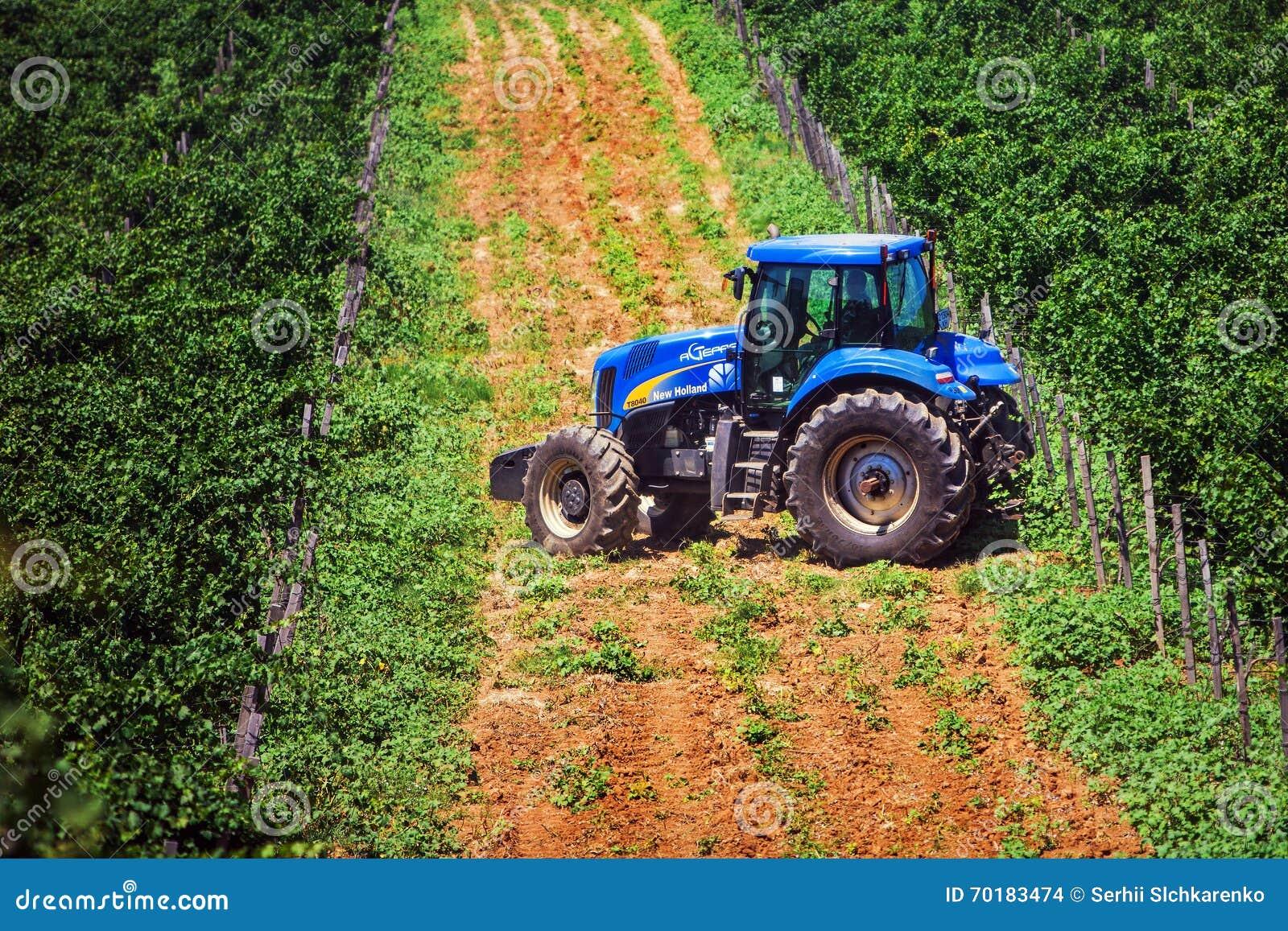 Blå traktor bland vingårdar under sommartid
