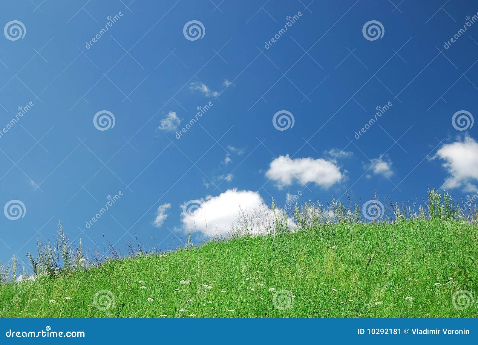 Blåa oklarheter gräs grön skywhite