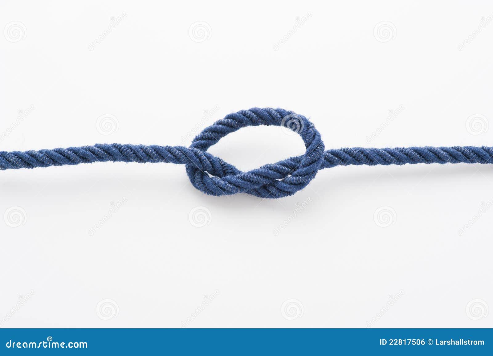 Blått bundet fnurrarep