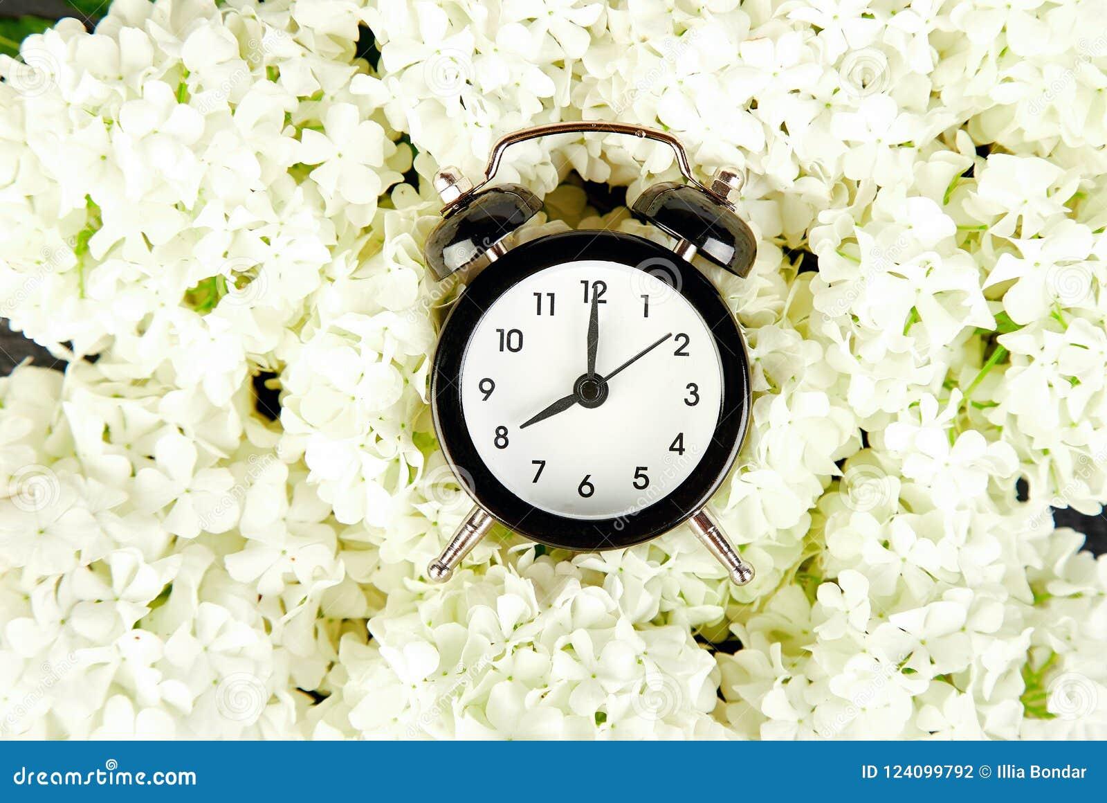 Black Alarm Clock And White Flowers On Black Background Stock Photo