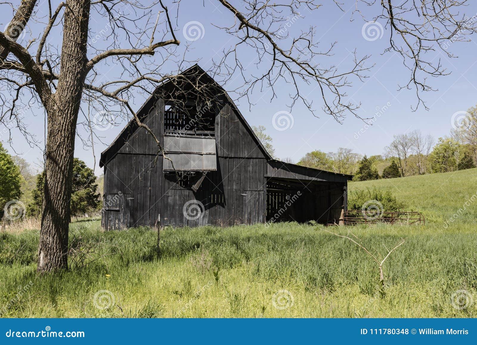 Black barn framed by trees.
