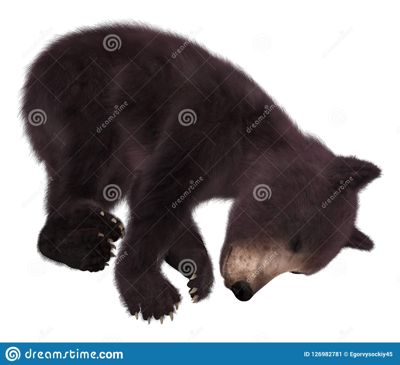39812c0b94a 3D illustration black bear cub isolated on white background. More similar  stock illustrations. Black bear cub with clipping path and santa hat. ...