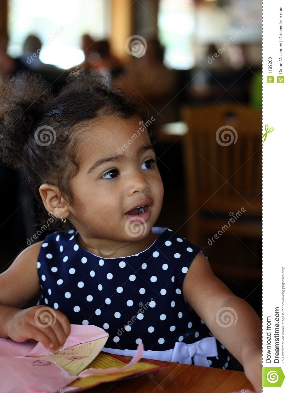 Black Bi Racial Toddler Female Stock Photo Image 1189260