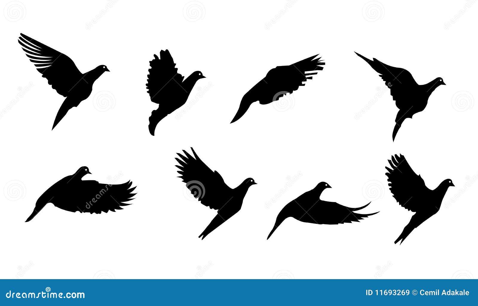 Black bird flying symbol vector