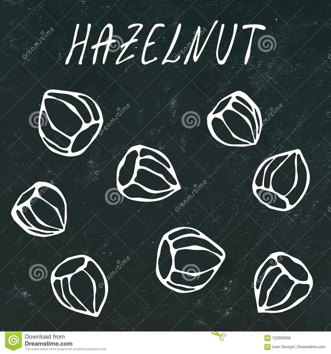 Black Board. Whole Unpeeled Hazelnuts in Shell. Healthy Snack. Autumn or Fall Harvest Collection. Realistic Hand Drawn High Qualit