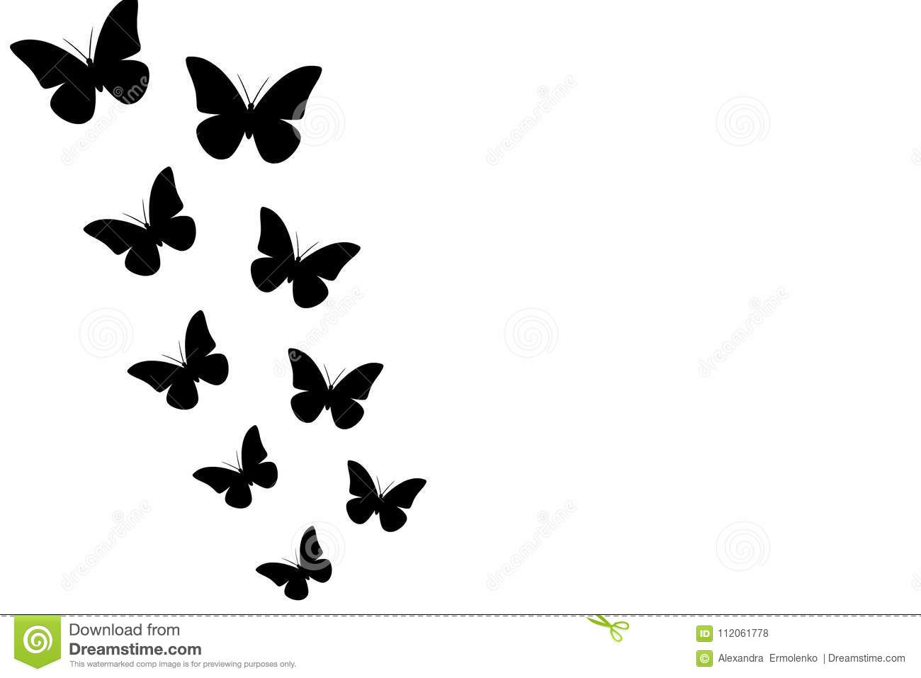 Black Butterflies On White Background Seamless Wallpaper