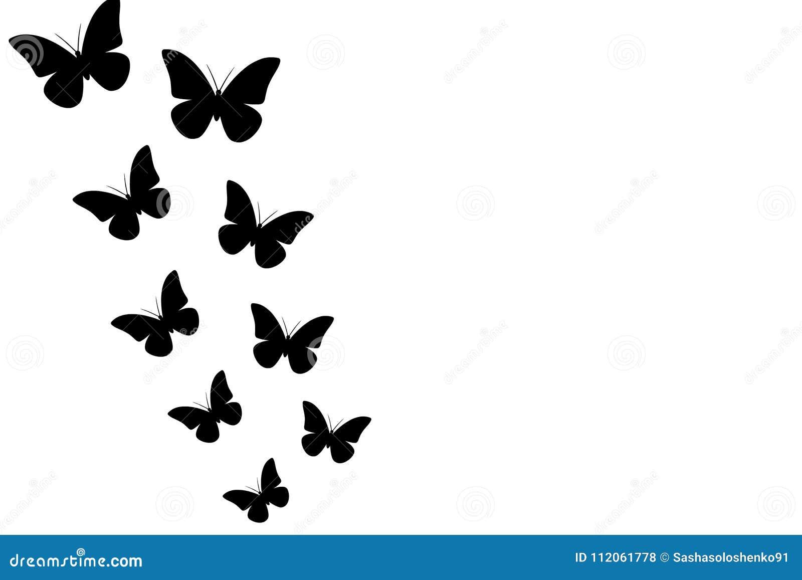 Black Butterflies On White Background Seamless Wallpaper Illustration Vector Stock Illustration Illustration Of Text Beautiful 112061778