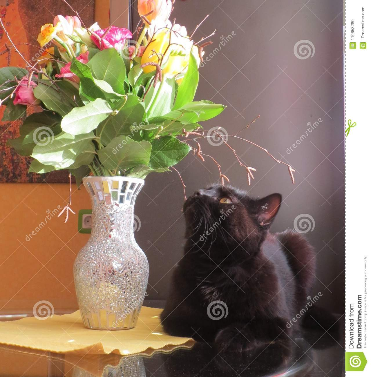 Black Cat And Bouquet Of Flowers Stock Photo Image Of Black
