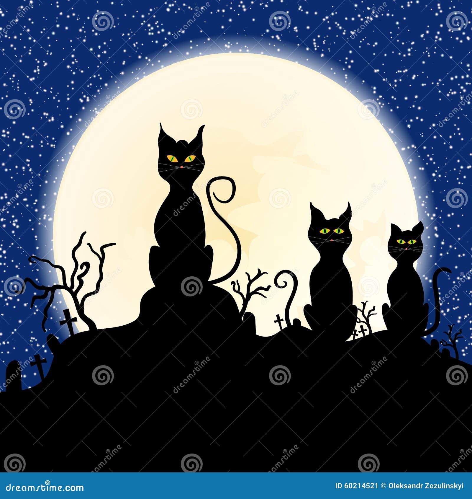 Black Cat Chimney