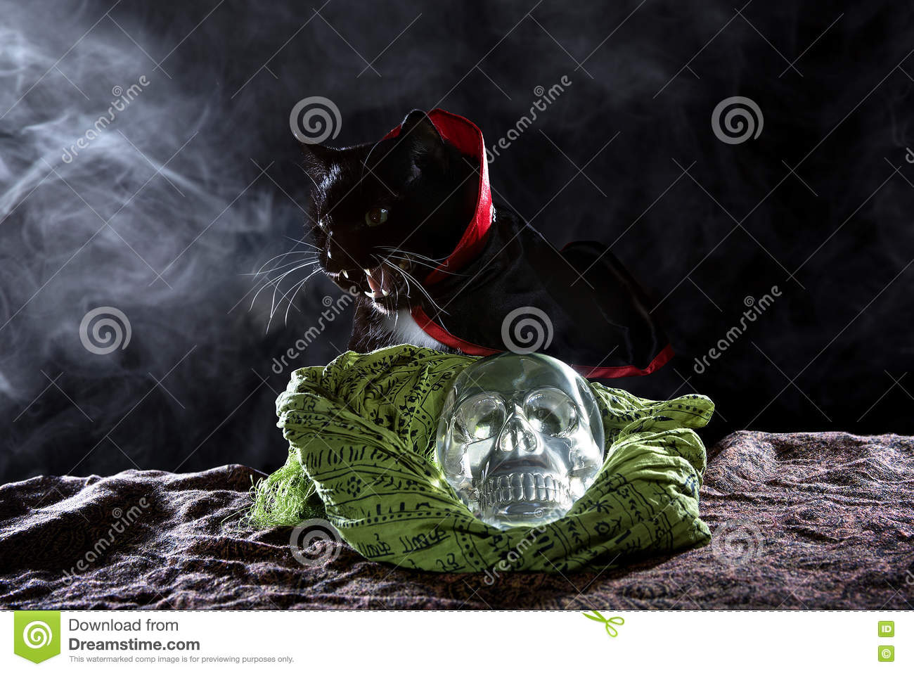 Black Cat with a Crystal Skull