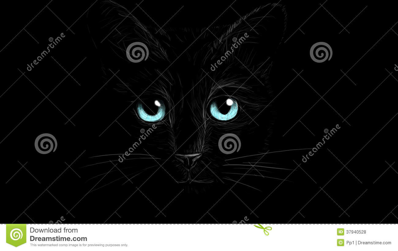 Black Cat With Eye Detail Royalty Free Stock Photos ...