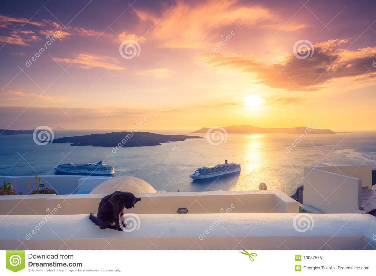 A black cat on a ledge at sunset at Fira town, with view of caldera, volcano and cruise ships, Santorini, Greece.