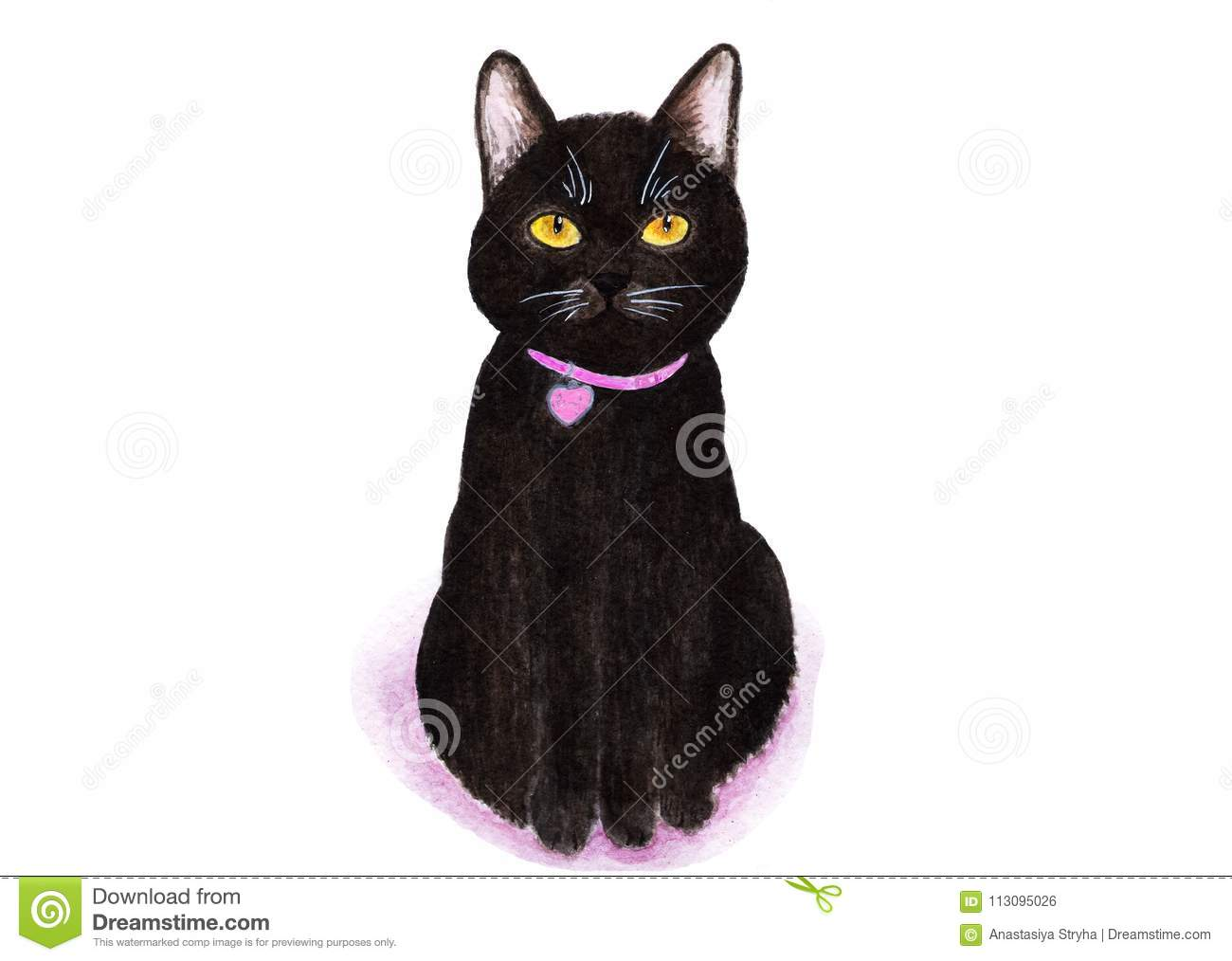Black cat portrait of a cat on a white background watercolor illustration