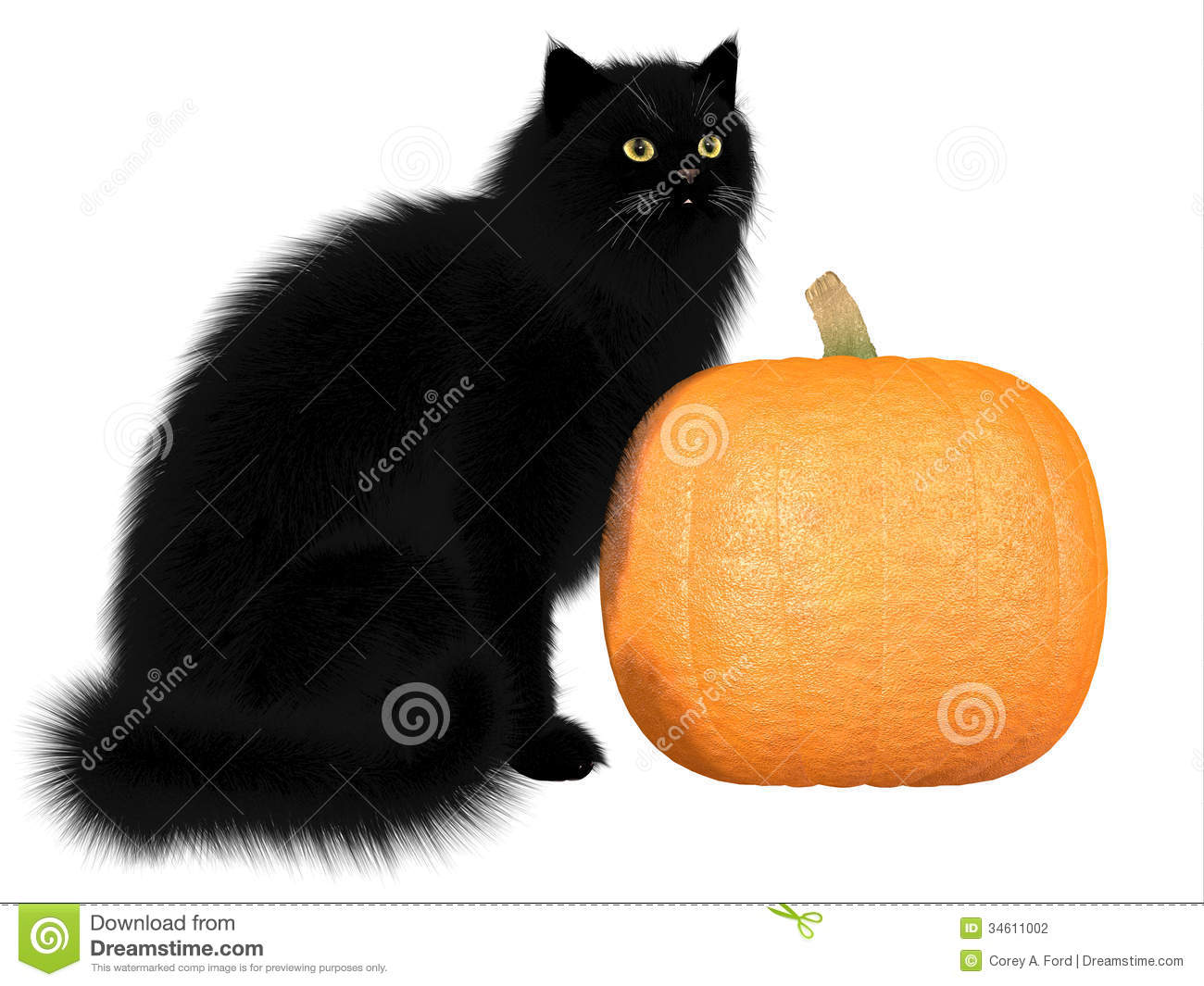 black cat symbolism essay The black cat and the cask of amontillado are very similar in some ways both include a lot of symbolism in the black cat the cask of amontillado narrative essay.
