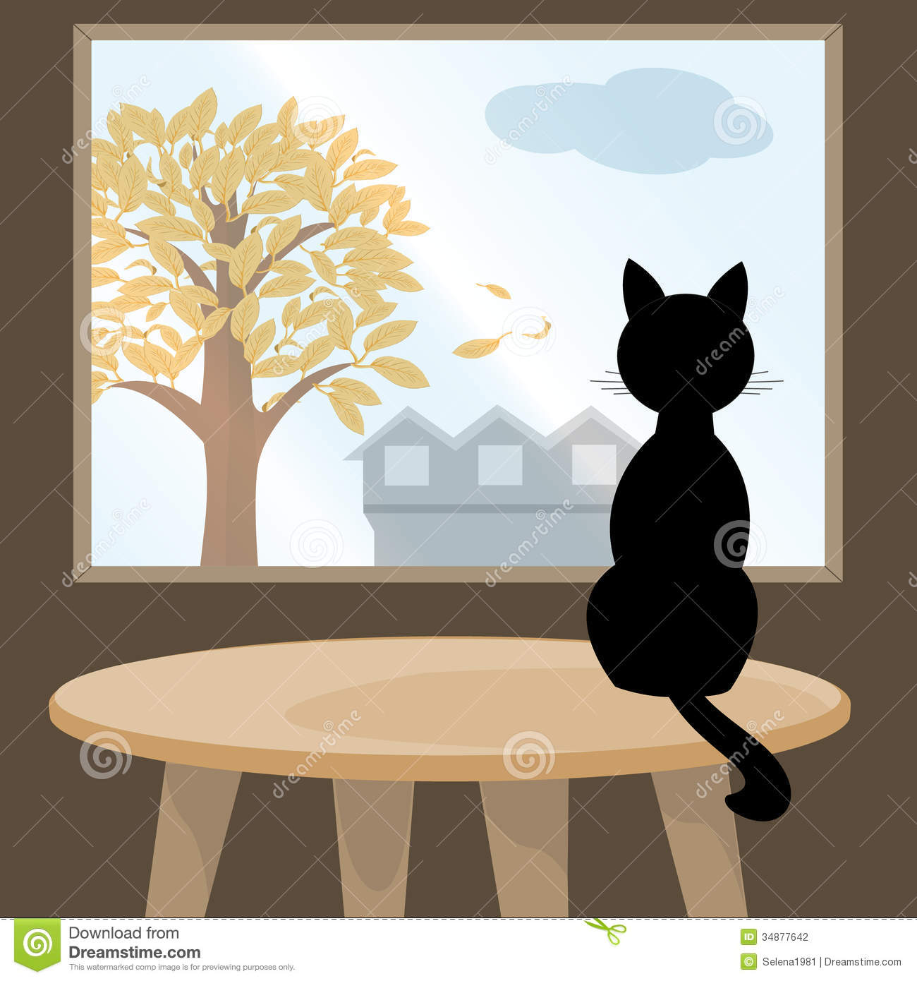 White Cat On Glass Table