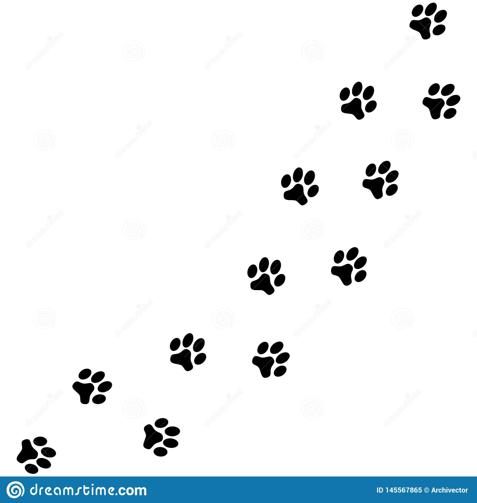 Dog paws traces stock vector. Illustration of mark, nature - 145567865
