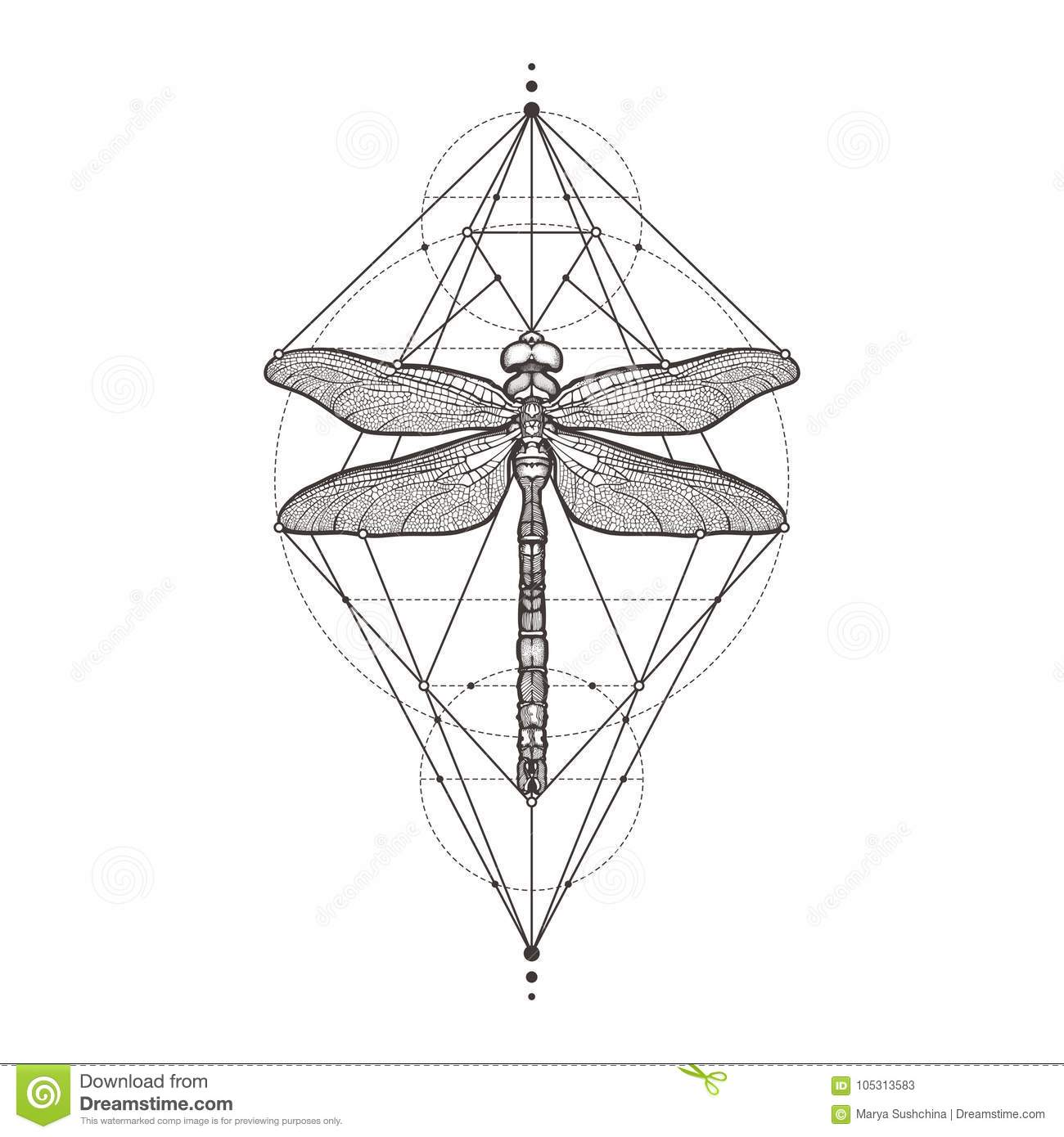Black dragonfly aeschna viridls isolated on white background black dragonfly aeschna viridls isolated on white background tattoo sketch mystical symbols and insects alchemy pooptronica Image collections