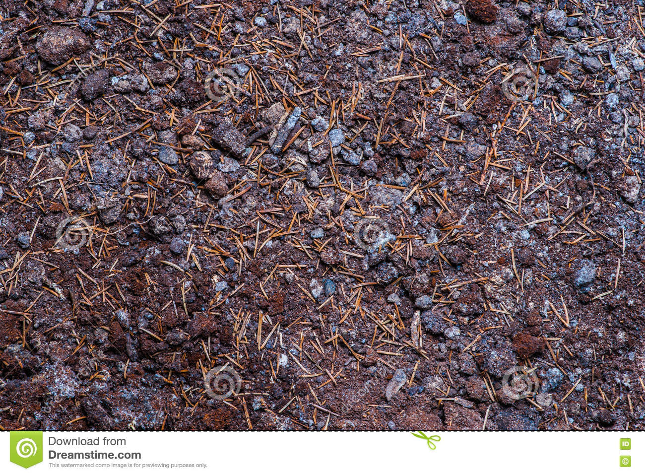 Black earth soil stock photo image 77564538 for What 5 materials make up soil
