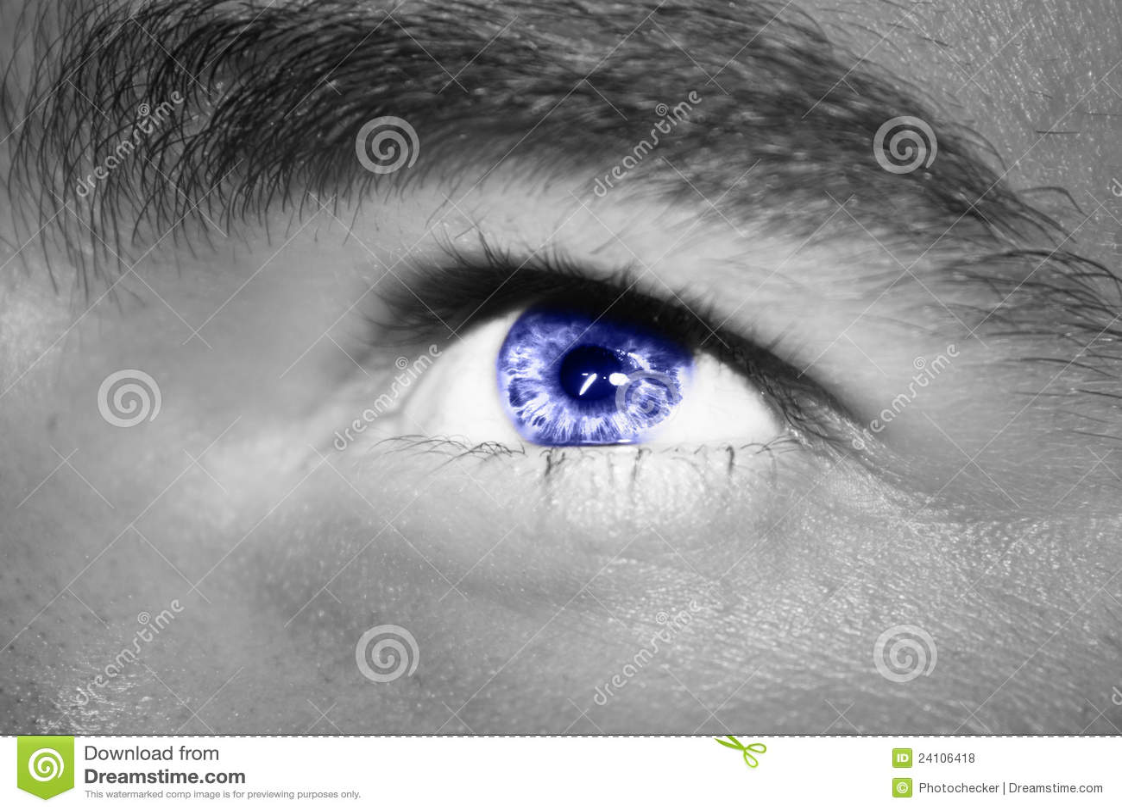 Black Eye In Focus Royalty Free Stock Photos - Image: 24106418