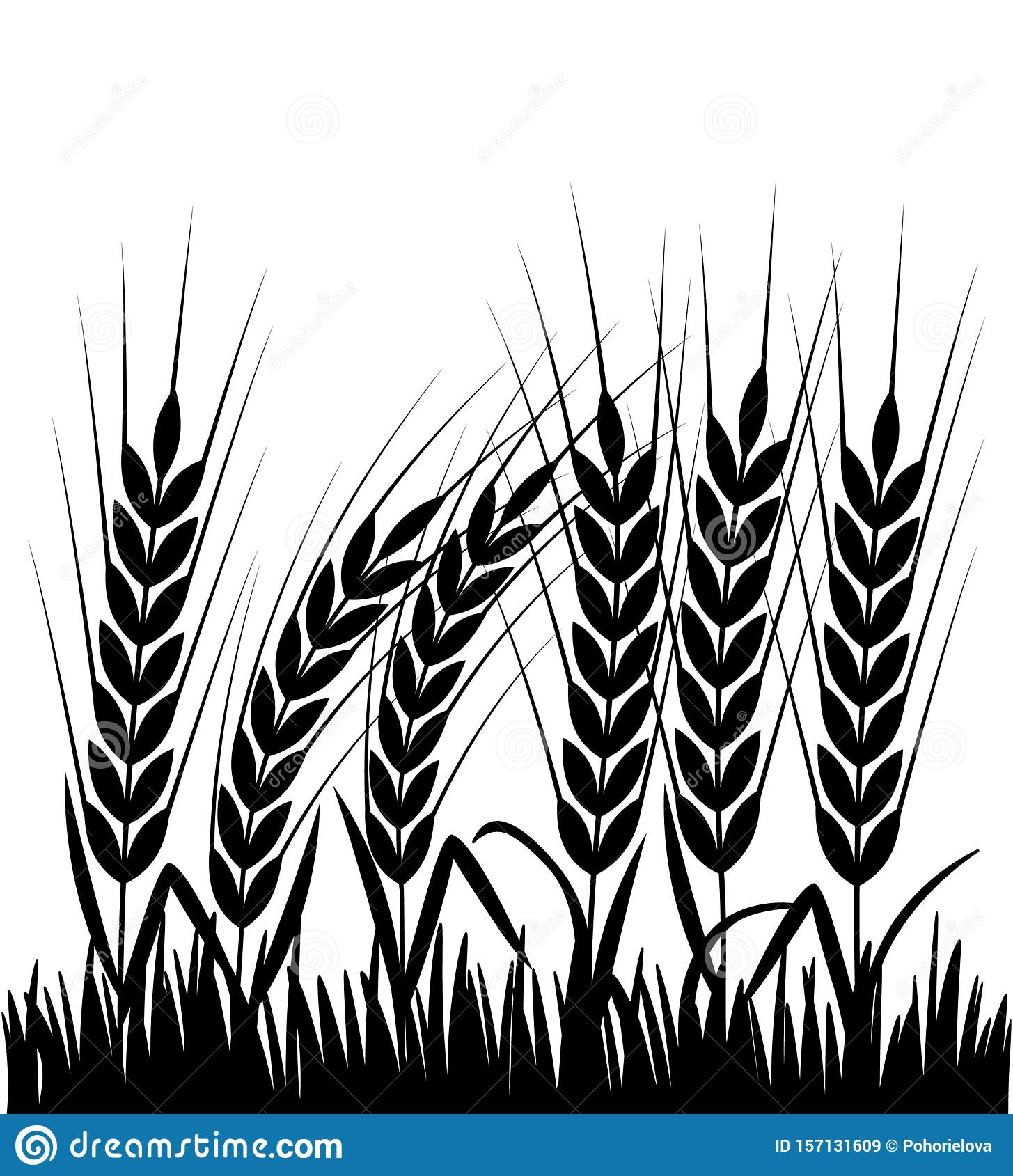Corn Field Png Black And White & Free Corn Field Black And ...   Cornfield Silhouette